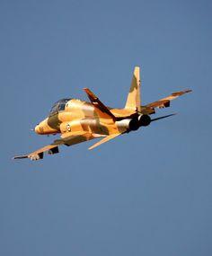 Northrop F-5F Tiger II - Iranian Air Force