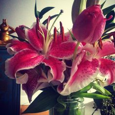Lillies and Tulips. :-)