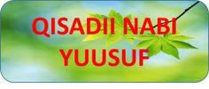 www.gaaldiid.com  