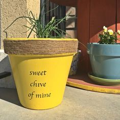 """My version of the """"punny"""" pots. Idea found on Etsy: Plant Puns. Painted Flower Pots, Painted Pots, Organic Gardening, Gardening Tips, Indoor Gardening, Pallet Gardening, Gardening Vegetables, Organic Farming, Clay Pot Crafts"""