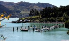 CHRISTCHURCH_DIAMOND_HARBOR_Jetty Short Trip, New Zealand, Facts, Diamond, Diamonds