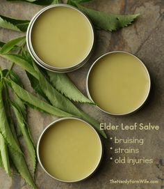 Learn how to incorporate elder leaves into a salve that is useful for treating…