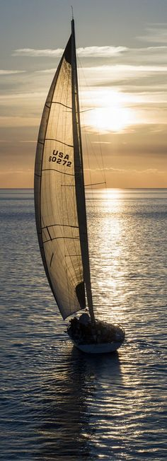Sunset sailing.