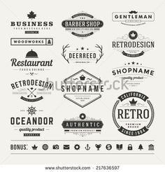 Typography  Retro Vintage Insignias or Logotypes set. Vector design elements business signs