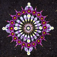 꽃잎작품-1