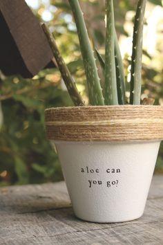 Aloe Can Yo Go? by PlantPuns on Etsy