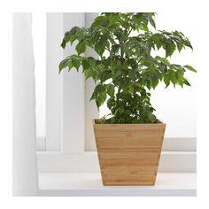 VILDAPEL Plant pot, bamboo