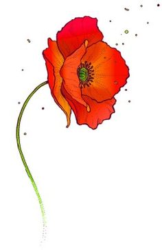 Poppy - to represent Miss Poppy Watercolor Poppies, Watercolor Cards, Red Poppies, Watercolor Paintings, Poppies Painting, Art Floral, Poppy Drawing, Poppies Tattoo, Botanical Illustration