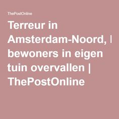 Terreur in Amsterdam-Noord, bewoners in eigen tuin overvallen   ThePostOnline