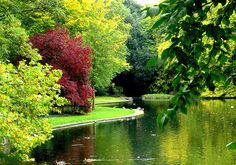 St. Stephen's Green, Dublin, Ireland -- one of my favourite places in the entire world.