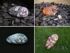 painted stone animals - Google-haku