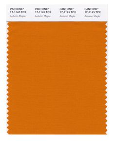 22 best pantone colors for fall 2017 images on pinterest fall 2017