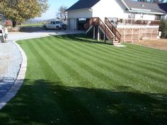 PreGra BlueGrass Artificial Grass Sold by the Linear oz. Faceweight Wide by Any Length you Need, in One Foot Increments Outdoor Landscaping, Front Yard Landscaping, Backyard Patio, Backyard Ideas, Low Maintenance Garden Design, Growing Grass, Artificial Turf, Fenced In Yard, Lawn