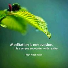 Meditation is not evasion. It is a serene encounter with reality. - Thich Nhat Hanh quotes about life Thich Nhat Hanh, Reiki, Meditation Quotes, Guided Meditation, Mindfulness Quotes, Spiritual Awakening, Spiritual Quotes, Yoga Zen, Inner Peace