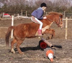 Show me your homemade jumps? - Horse and Hound Forums