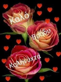 Good Night, Good Morning, Beautiful Pink Roses, Sweet Dreams, Flowers, Plants, Greek, Photos, Nature