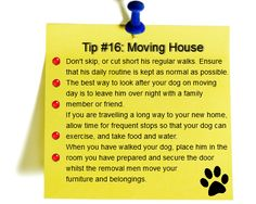 """Tip #16: Practical Advice When Moving House With a Dog"" Moving house is a very stressful time and can lead to your canine friend becoming anxious, stressed, and unhappy. Here are some simple tips to make your move a success.  http://www.dogtrainingadvicethatworks.com/tip-16-practical-advice-when-moving-house-with-a-dog/"