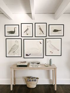 Swedish Bird Prints by century Olof Rudbeck Wall Art Giclee reproductions of Swedish Birds original watercolors from 1720 by Olof Rudbeck. Quality giclee reproduction print on fine paper of highly desirable designer bird prints that will not fade. Wall Art Designs, Wall Design, House Design, Bird Prints, Wall Art Prints, Apartment Decoration, Wall Groupings, A Frame Cabin, Room Inspiration