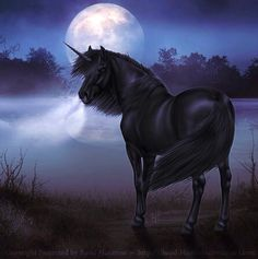 Black Unicorn Fantasy Myth Mythical Mystical Legend Licorne Full Moon