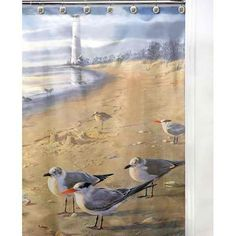 New! At The Beach Seagull Print Fabric Shower Curtain