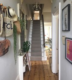 Just back from 'Beauty and the Beast' and battening down the hatches for a Sunday eve of TV and laundry sorting 🙄 rock and roll! Victorian Terrace Hallway, Edwardian Hallway, Victorian Terrace Interior, Victorian House Interiors, Edwardian House, Victorian Homes, Hall Tiles, Tiled Hallway, Hallway Walls