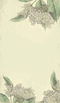 Elderflower Syrup Label