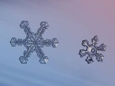 Snowflake macro photos are everything you always thought they would be!   ♡