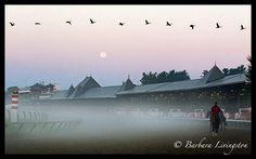This morning's Saratoga moon. Barbara Livingston