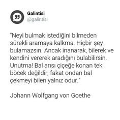 Johann Wolfgang Von Goethe, Love Pain, Good Sentences, Meaningful Words, Cool Words, Karma, Nature Photography, Letters, Pua