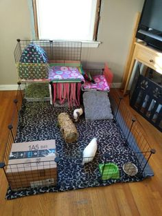 DIY guinea pig cage for my girls