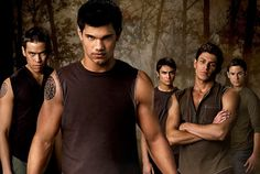 The Wolfpack Twilight Saga