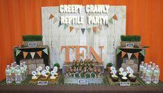 BOYS PARTY IDEA! Creepy Crawly Reptile Party Photos + Inspiration!