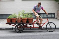 cargo bikes meets sustainable food - so environmentally friendly.
