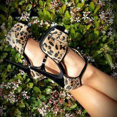 Leopard Print Heels  #heels   #heelsfashion   #heelshoes   #cuteness   #glitter   #platformheels   #platformshoes   #pumps   #pumps_shoes   #spring2014   #springfashion2014   #springfashiontrends   #springfashion