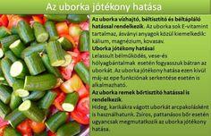 Cucumber, Healthy Lifestyle, Vitamins, Food And Drink, Healthy Eating, Herbs, Vegetables, Drinks, Herb Garden