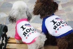 100 самых популярных кличек собак в мире (девочек и мальчиков) | Короткие Истории Длинной Таксы Love Rocks, Dog Life, Dachshund, Winter Hats, Pets, My Love, Trending Outfits, Shirt, Clothes