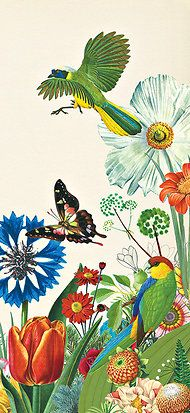 """Parrot with butterfly and bird. Illustration by Valero Doval for Rachel Carson's """"Silent Spring"""". © New York Times 2012."""