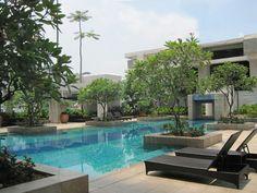 jardin con piscina y tumbonas para tomar el sol