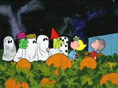 "ABC is getting into the spirit with Charlie Brown and the Toy Story gang this October! Tuesday, October 2015 ET ""It's the Great Pumpkin, Charlie Brown"" -- The classic animated Halloween-. Snoopy Halloween, Charlie Brown Halloween, Great Pumpkin Charlie Brown, Fröhliches Halloween, It's The Great Pumpkin, Halloween Quotes, Vintage Halloween, Halloween Goodies, Halloween Pictures"