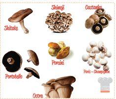 Blog+Confra+dos+Chefs+-+Cogumelos.jpg (800×688)