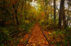 Old Railroad Tracks By the Susquehanna River by ozoni11, via Flickr