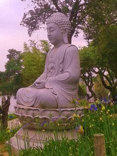 Buddha Eden - Junho 2015