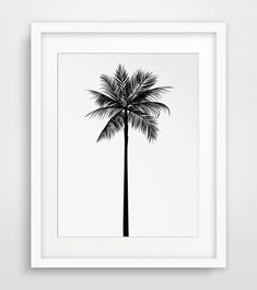Palm Leaf Drawing Palm tree print palm leaves
