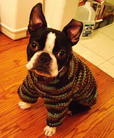 dog sweater tutorial (crochet)Love the legs, great for our weather!