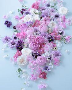 "1,362 Beğenme, 8 Yorum - Instagram'da Mallow (@tomoko_koshiishi): ""❤︎ Mallow Flowers&more : マロウのスタートはオウチバナレッスン はじめのレッスンはたしか2名。…"""
