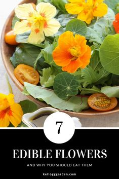 7 EDIBLE FLOWERS AND WHY YOU SHOULD EAT THEM From salads to cocktails nothing speaks of sophistication and organic goodness as much as edible flowers do so come on buy some transplants or start some seeds! Youre about ready to kick things up. Fruit Garden, Edible Garden, Garden Plants, Herb Garden, Organic Gardening, Gardening Tips, Kitchen Gardening, Cleaning Recipes, Growing Tomatoes