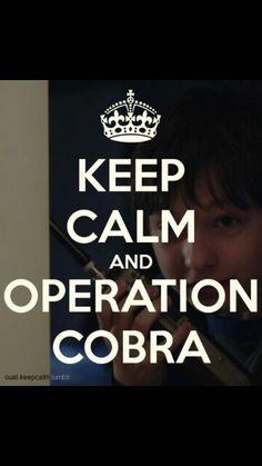 #OUAT keep calm and operation cobra