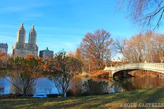 World Trade Center, Central Park, Nyc In December, New York 2017, Gossip Girl, New York City, Miami, Places To Visit, Mansions