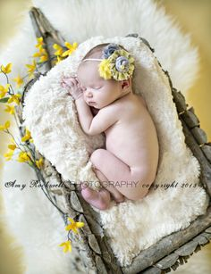 Newborn Inspiration, love the natural flowers