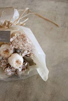 Cream Aesthetic, Flower Aesthetic, Aesthetic Collage, Flower Background Wallpaper, Flower Backgrounds, Dried Flower Arrangements, Dried Flowers, Aesthetic Photography Pastel, Plain Wallpaper Iphone